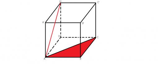 unghiul format de dreapta AD' cu planul (ABC)
